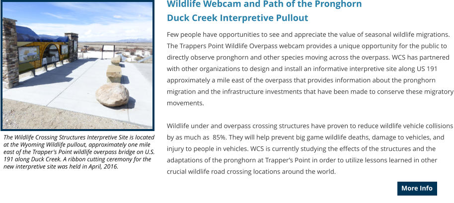 Wildlife Webcam and Path of the Pronghorn  Duck Creek Interpretive Pullout Few people have opportunities to see and appreciate the value of seasonal wildlife migrations. The Trappers Point Wildlife Overpass webcam provides a unique opportunity for the public to directly observe pronghorn and other species moving across the overpass. WCS has partnered with other organizations to design and install an informative interpretive site along US 191 approximately a mile east of the overpass that provides information about the pronghorn migration and the infrastructure investments that have been made to conserve these migratory movements.  Wildlife under and overpass crossing structures have proven to reduce wildlife vehicle collisions by as much as  85%. They will help prevent big game wildlife deaths, damage to vehicles, and injury to people in vehicles. WCS is currently studying the effects of the structures and the adaptations of the pronghorn at Trapper's Point in order to utilize lessons learned in other crucial wildlife road crossing locations around the world.  More Info More Info The Wildlife Crossing Structures Interpretive Site is located at the Wyoming Wildlife pullout, approximately one mile east of the Trapper's Point wildlife overpass bridge on U.S. 191 along Duck Creek. A ribbon cutting ceremony for the new interpretive site was held in April, 2016.